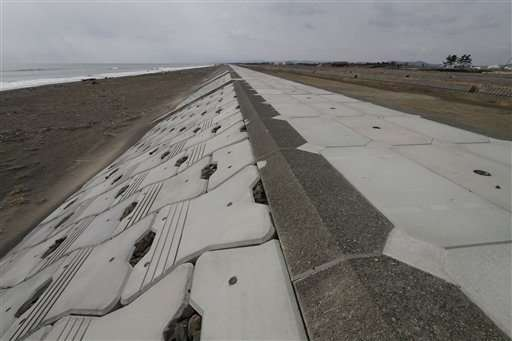 Barrera de cemento de 7,2 metros (24 pies) de altura a lo largo de la costa de Iwanuma, en el noreste de Japón, en foto del 13 de marzo del 2015. El muro frenó un poco pero no contuvo las aguas del tsunami de hace cuatro años y ahora se planean muros mucho más altos para proteger la costa japonesa de futuros desastres naturales. (AP Photo/Koji Ueda)