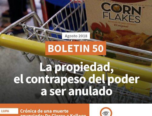 Boletín 50: La propiedad, el contrapeso del poder a ser anulado