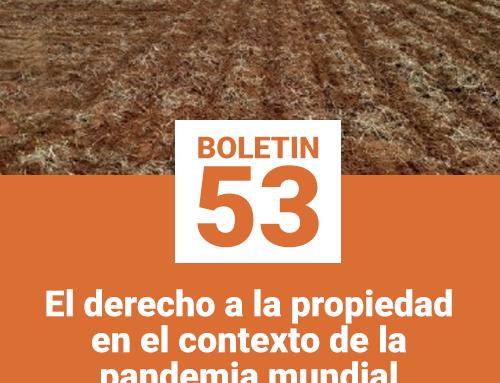 Boletín 53 | Sacaron de la hibernación a las ocupaciones temporales y ventas supervisadas