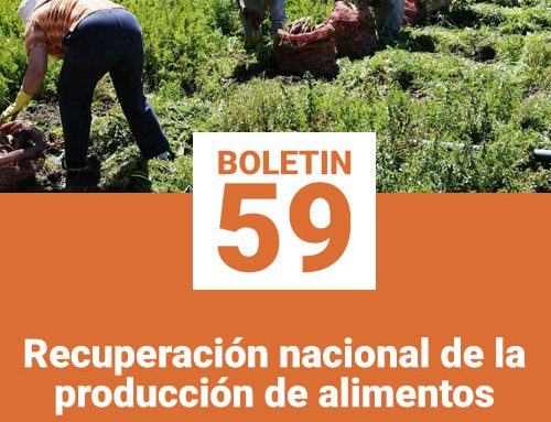Boletin 59 | Recuperación nacional de la producción de alimentos