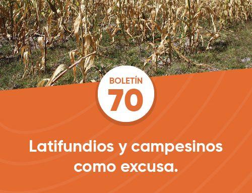 Boletín 70 | Latifundios y campesinos como excusa